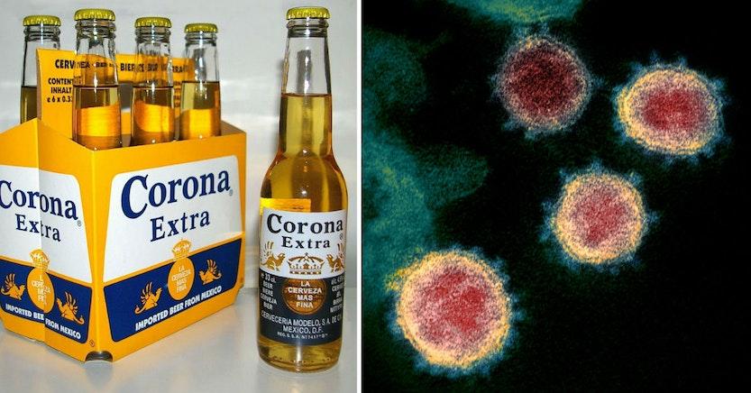 Corona beer and Novel Coronavirus SARS-CoV-2