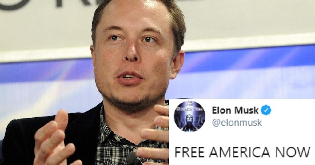 """Elon Musk and """"free America now"""" tweet"""