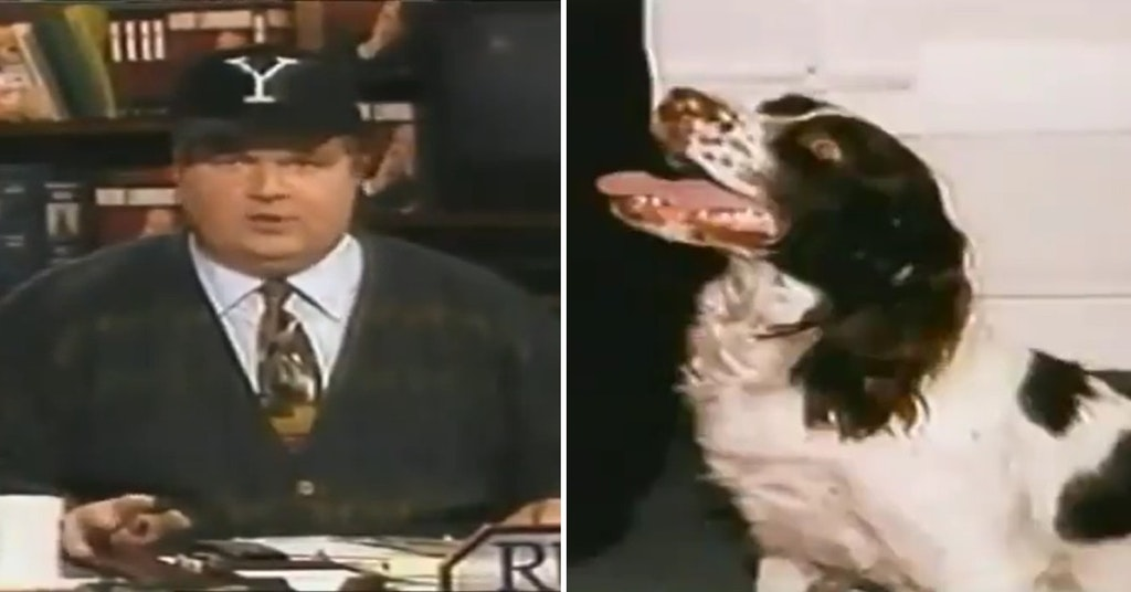 Rush Limbaugh on his TV show in the 1990s comparing Chelsea Clinton to a dog