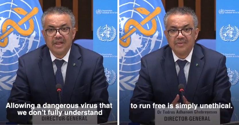WHO Director General Tedros Adhanom Ghebreyesus panning herd immunity strategy for the coronavirus pandemic